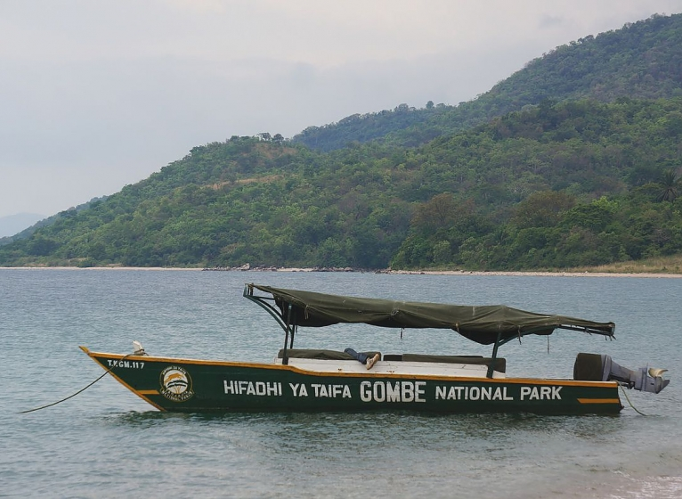 Boat at Gombe