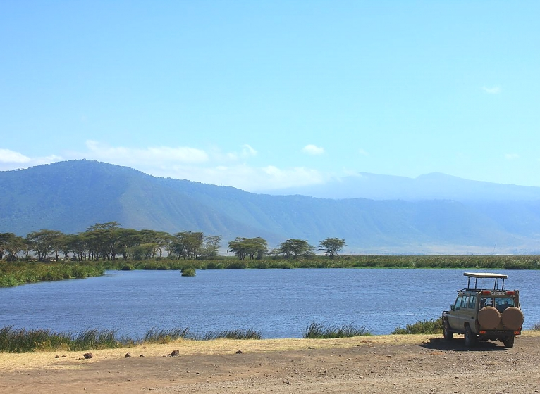 Ngoitok tok in the Ngorongoro Crater